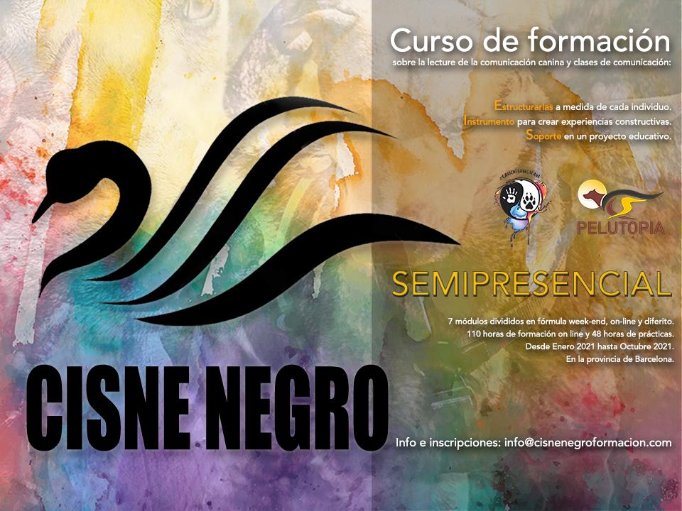 Curso Cisne Negro 2021 Etología canina y comunicación